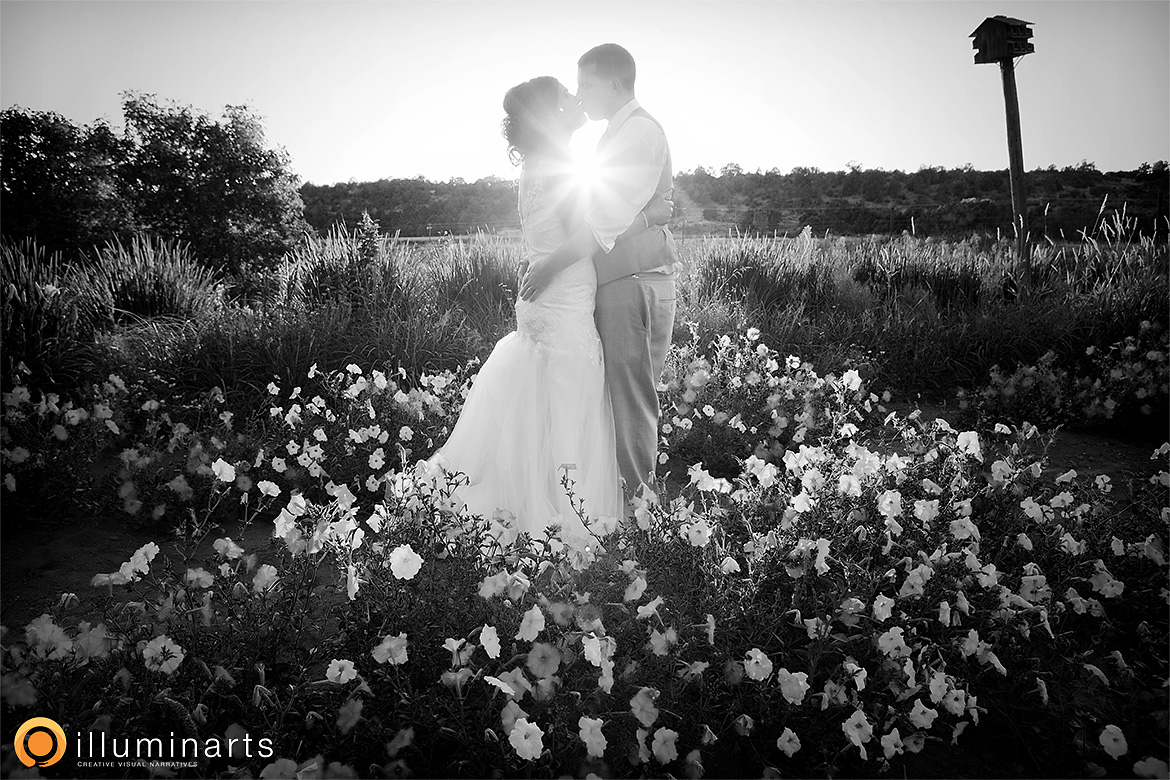 B&D14_hesperus_wedding_illuminarts